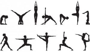 Hatha Yoga @ Palestra XM24 | Bologna | Emilia-Romagna | Italia