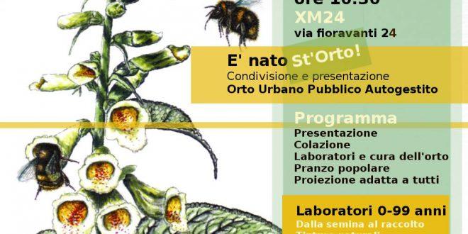 Calendario Semina Orto 2020.E Nato St Orto L Orto Urbano Pubblico Autogestito Di Xm24